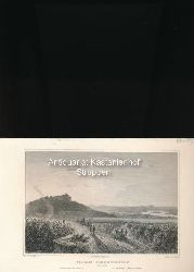 Gez. v. L. Lange/Stahlst. von L. Rohbock  Schloss Johannisberg am Rhein - Original-Stahlstich,Johannisberg Castle. Le chateau Johannisberg. Darmstadt bei G. G. Lange.