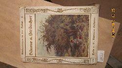 Arabella Buckley  Kinderaugen in der Natur  Fünftes Buch  Bäume und Sträucher