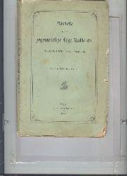 """"""".""""  Briefe über die gegenwärtige Lage Russlands  11. (23.) April 1879 - 6. (18.) April 1880"""