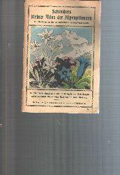 """""""Dr. Carl Maisch""""  """"Schreibers kleiner Atlas der Alpenpflanzen"""""""