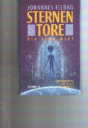 """""""Johannes Fiebag""""  """"Sternentore  Sie sind hier  Ausserirdische Präsenz auf der Erde und im Sonnensystem"""""""