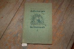 """""""Frankenberg Dr.""""  """"Entdeckungen im Stadtwald"""""""